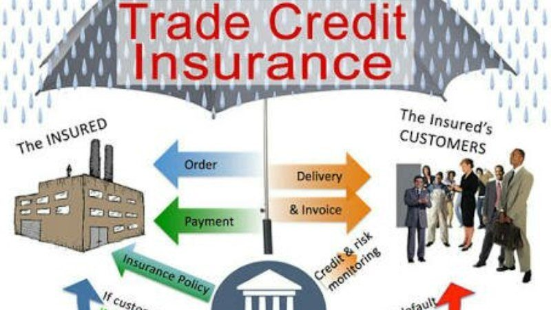 All Things About Credit Insurance